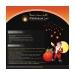 santa-wish-lanterns-1